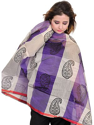 Double-Shaded Chanderi Dupatta with Printed Paisleys