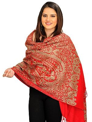 Densely Ari-Embroidered Stole from Amritsar with Paisleys