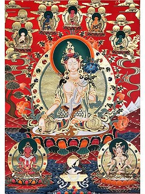 Superfine White Tara With Five Dhyani Buddhas - Tibetan Buddhist Super Large Thangka