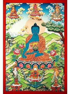 A Superfine Portrait of the Medicine Buddha - Tibetan Buddhist Brocadeless Thangka