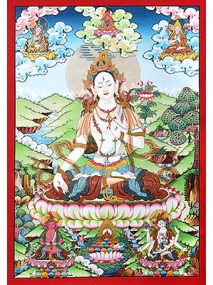 Superfine Tibetan Buddhist Saviour Goddess  White Tara -Brocadeless Thangka