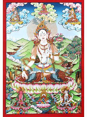Superfine Tibetan Buddhist Saviour Goddess  White Tara -Brocadeless Thangka