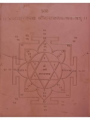 Ashta Aksharatamkam Shri Narayan Mantra Yantram (The Eight Syllable Yantra of Shri Narayan)