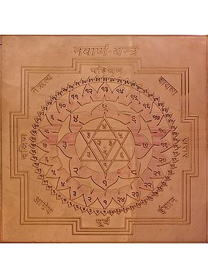 Navarna - Yantra (Yantra to Worship the Mother Goddess)