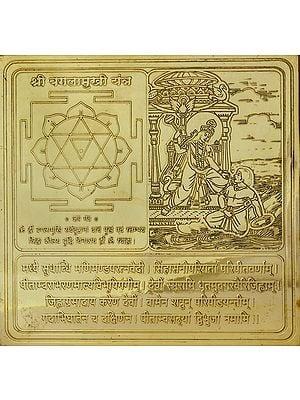 Shri  Bagalamukhi Yantra (Ten Mahavidya Series)