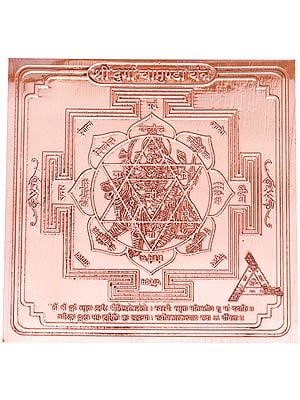 Shri Durga Chamunda Yantra - The Supreme Mother Goddess