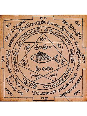Matsya Yantra for Vastu Doshas (Telugu)