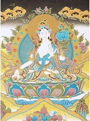 Tibetan Buddhist Saviour Goddess White Tara