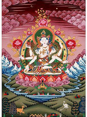 Tibetan Buddhist Deity Vasudhara: Goddess of Wealth and Wisdom