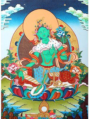 Emerald Green Goddess Green Tara - Tibetan Buddhist Brocadeless Thangka