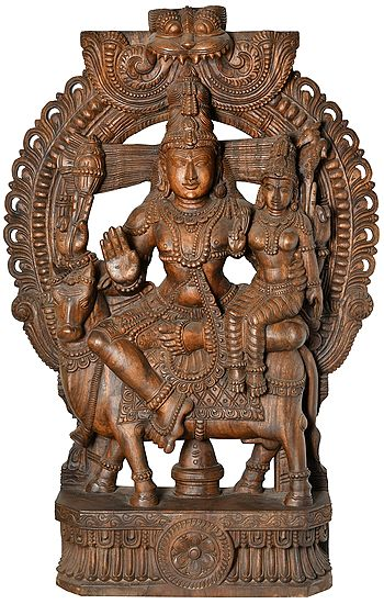 Lord Shiva as Pashupatinath, The Cosmic Patriarch