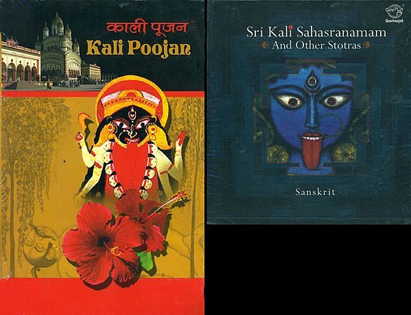 Sri Kali Sahasranamam and Other Stotras (With Free Book Containing the Kali Ashtottara Shatanamavalli in Sanskrit and Roman, Making it Ideal for Chanting with the CD) Sanskrit (Audio CD)