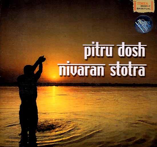 Pitru Dosh Nivaran Stotra (Audio CD)