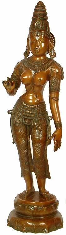 Large Size Devi: The Manifestation of Primordial Female Energy