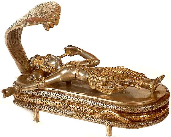 Lord Vishnu in Yoga Nidra