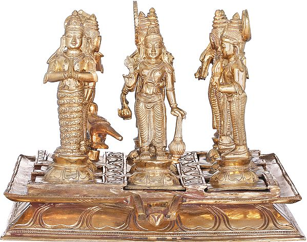 Navagraha (The Nine Planets) Deities - With Each Deity Facing the Correct Direction (Highly Auspicious and Suitable for Ritual and Worship for the appeasement of Navagraha or Nine Planets)