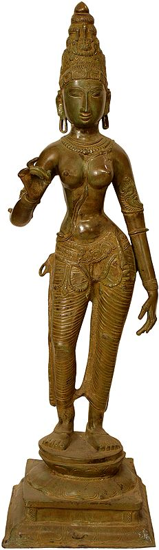 (Large Size) Devi: The Manifestation of Primordial Female Energy