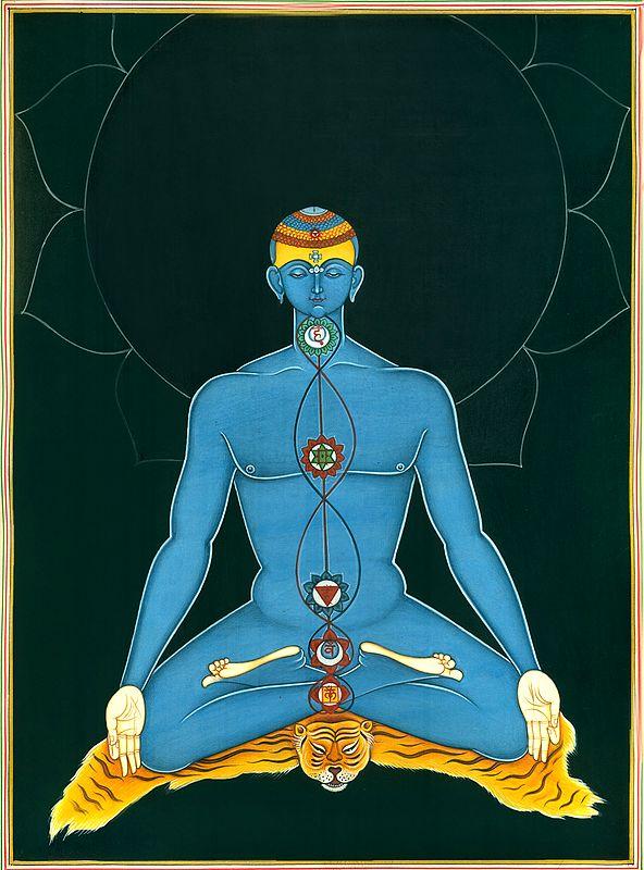 Kundalini Yoga Chakras in Human Body