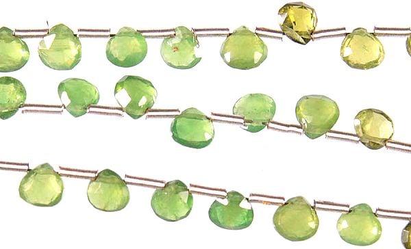 Faceted Green Tourmaline Briolette