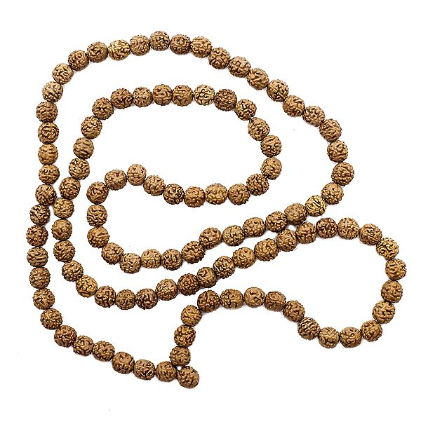 Rudraksha Mala (Rosary) with 108 Beads for Chanting