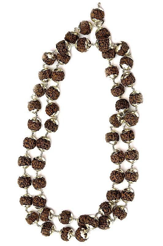 Large Rudraksha Mala of 54 Beads for Chanting