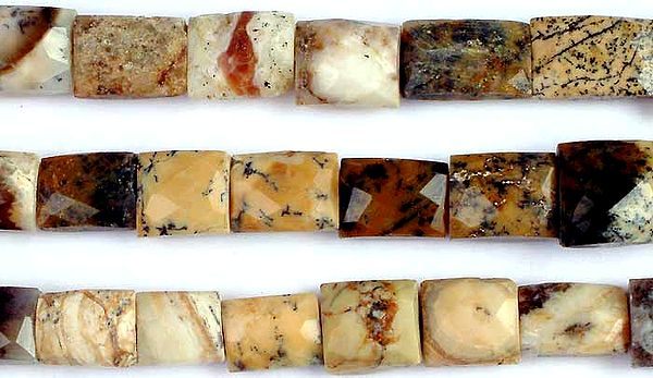 Picture Jasper Faceted Chewing Gum