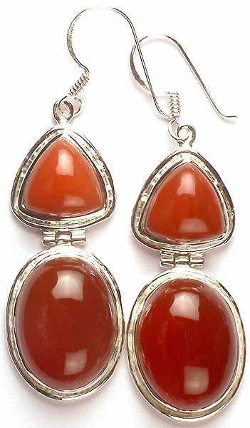 Twin Carnelian Hinged Earrings