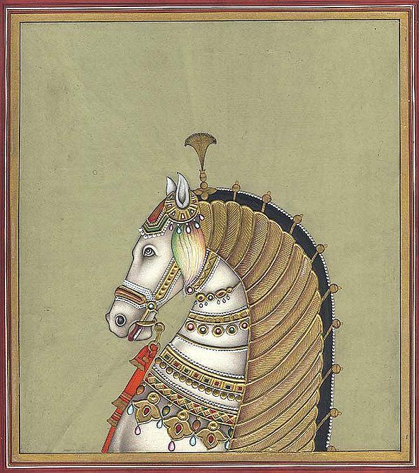 A Royal Steed