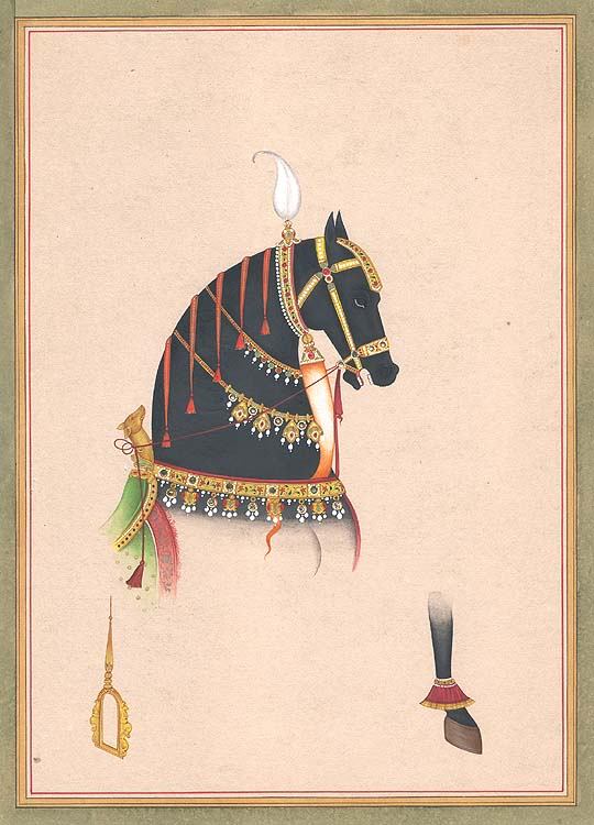 Horse and Accessories