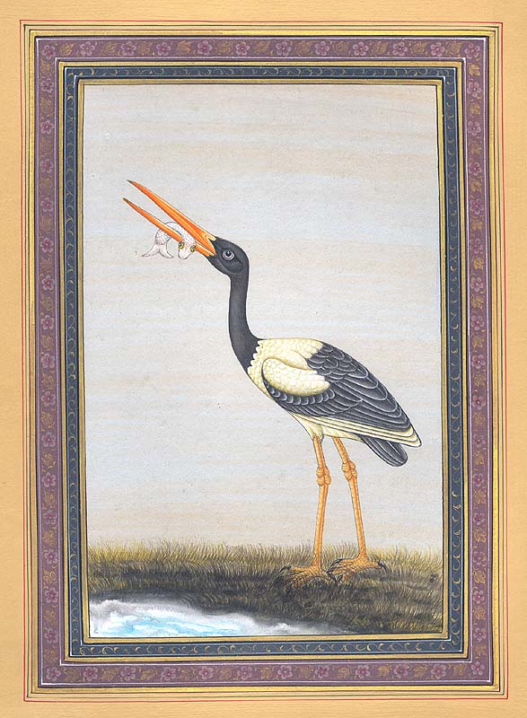 Sarus/Heron