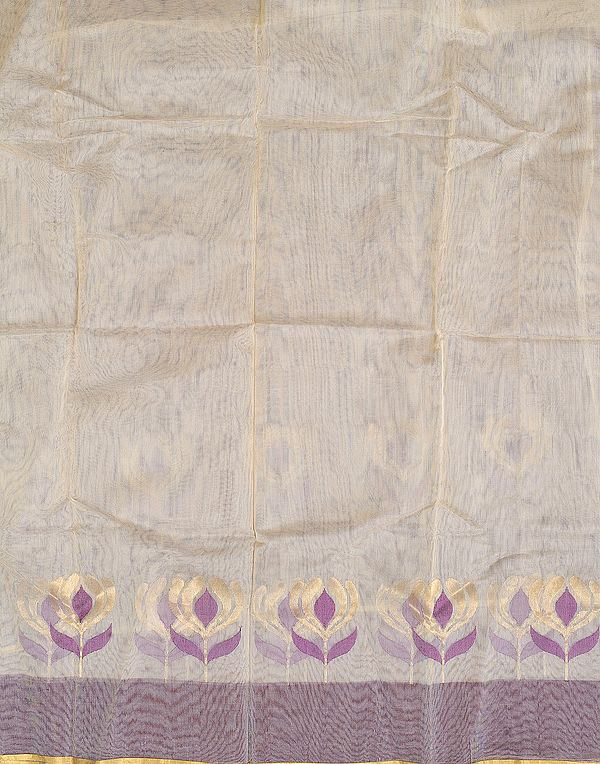 Ivory Net Fabric from Banaras with Flowers on Border