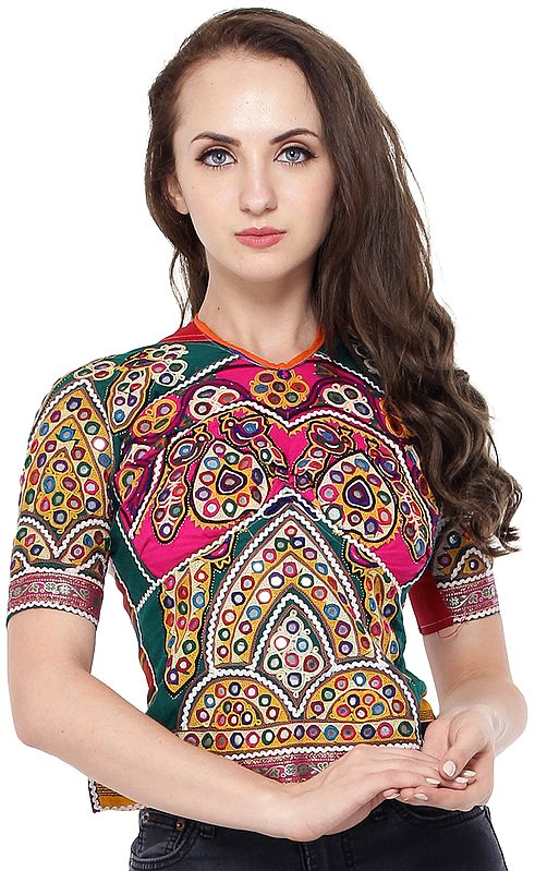 Everglade Backless Choli from Kutch with Embroidered Motifs and Mirrors