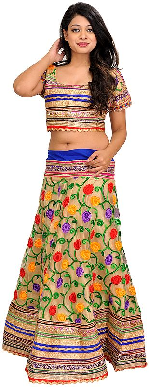 Frosted-Almond Two-Piece Lehenga Choli with Ari-Embroidered Flowers and Gota Patch Border