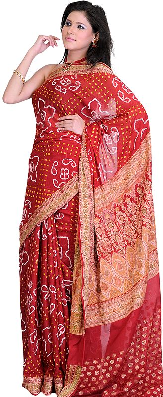 Chili Pepper Bandhani Tie-Dye Sari from Jodhpur with Brocade Weave on Anchal