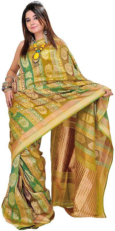 Palm-Green Banarasi Jamdani Sari with Woven Floral Motifs and Brocaded Pallu