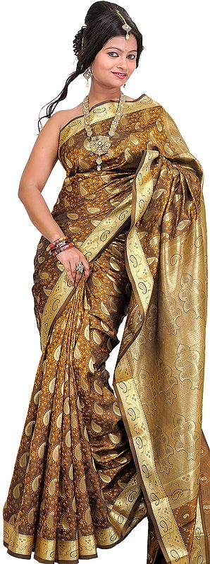 Bronze-Brown Sari from Bangalore with Woven Paisleys and Brocaded Aanchal