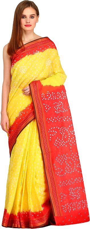 Lemon and Red Bandhani Tie-Dye Sari from Jodhpur with Woven Border