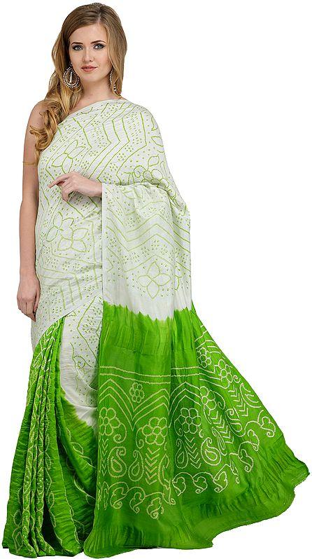 Green-Flash Shaded Bandhani Tie-Dye Gajji Silk Sari from Rajasthan