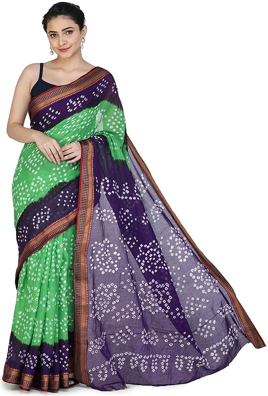 Bandhani Tie-Dye Sari from Gujarat with Zari-Woven Border