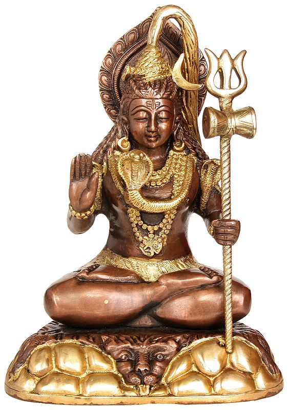 Blessing Lord Shiva