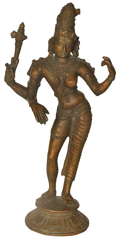 The Tall And Slender Ardhanarishvara
