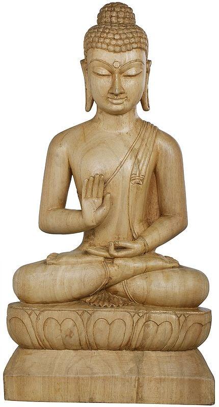 The Placid Gautama Buddha