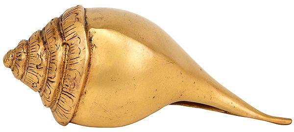 Auspicious Conch