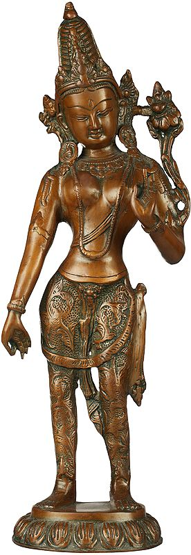 Tibetan Buddhist Deity- Standing Tara (Dhoti Decorated with Vegetative Designs)