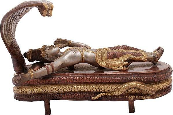 Lord Vishnu in Yoga Nidra on Sheshnag