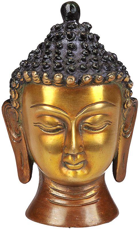 The Buddha Head (Small Sculpture)