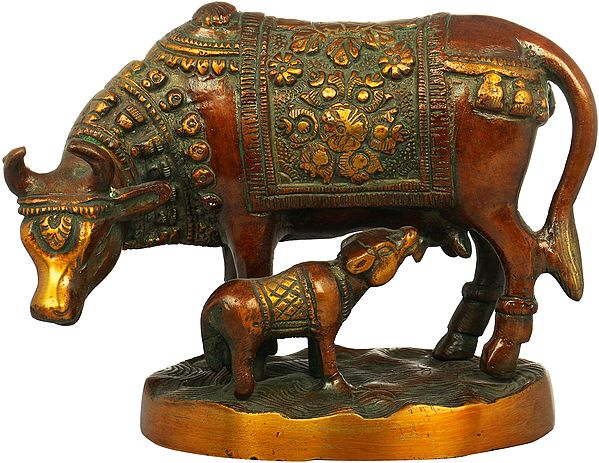 Cow and Calf - Most Sacred Animal of India (Saddle Decorated with Flowers)