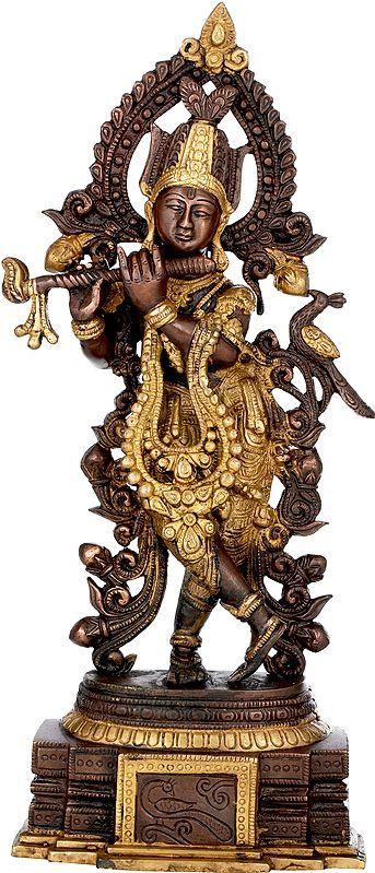 Peetambara Lord Krishna