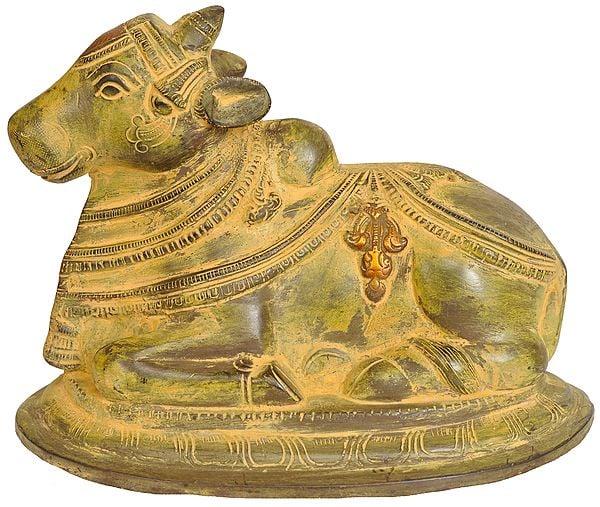 Nandi - The Mount of Lord Shiva (Gatekeeper of Shiva and Parvati)