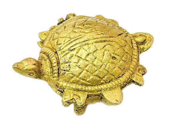 Vastu Tortoise Box